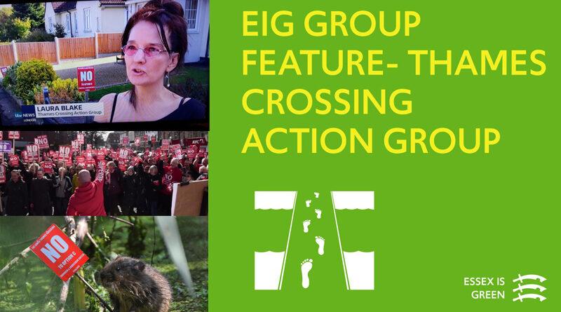 EIG Mini-Feature